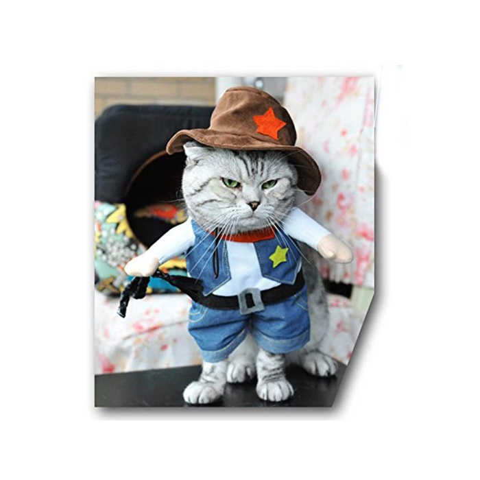 Cowboy Dog Costume with Hat Dog Clothes Halloween Costumes for Cat and Small Dog Pet Clothese