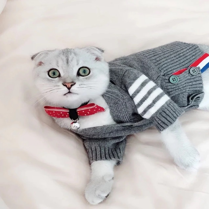 Leisure Elegant Fall Winter Anti-Cold Warm Pet Clothes